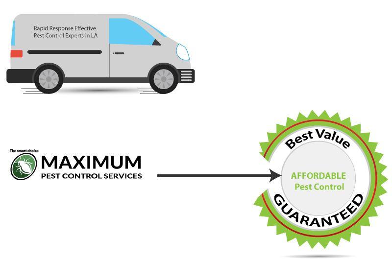 pest control service van illustration and circle shape