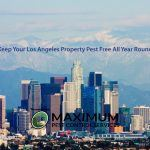 Los Angeles California CBD snowy mountains in background
