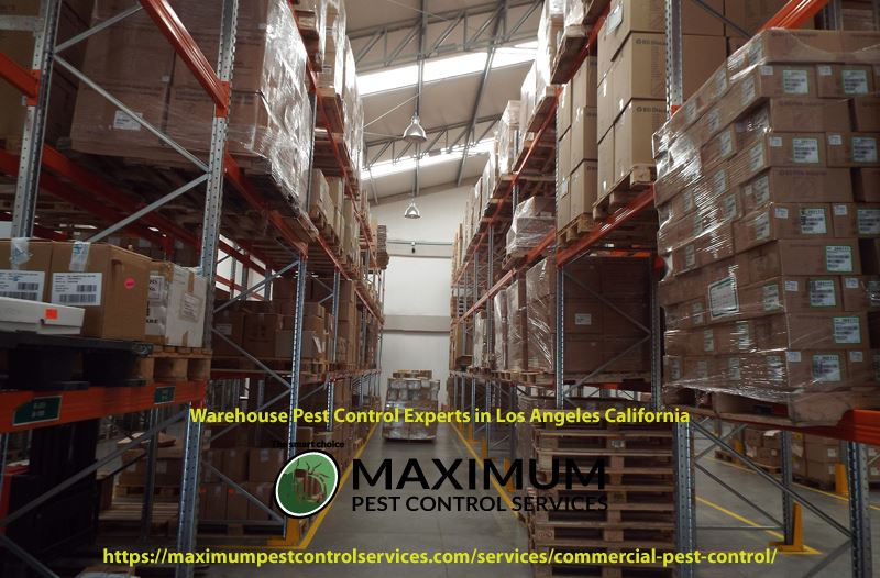 storage warehouse with boxes on shelf