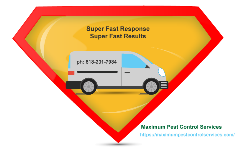 superfast response superfast results